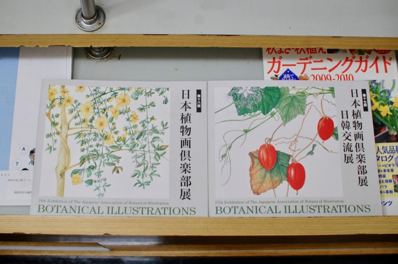 日本植物画倶楽部