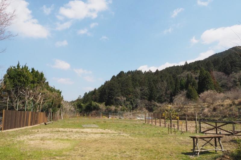 豊能町の農園